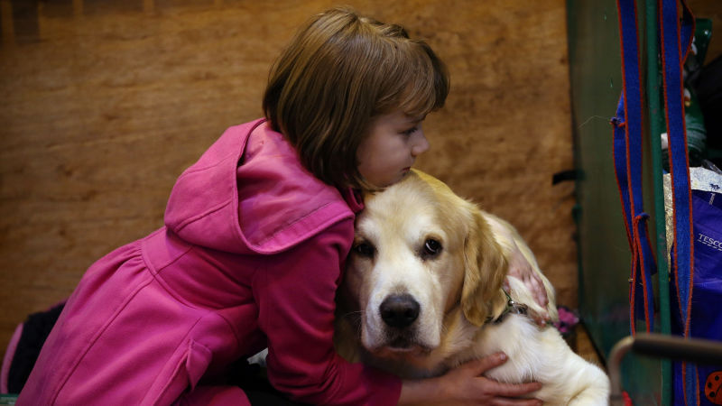 Choose the best pet for kids