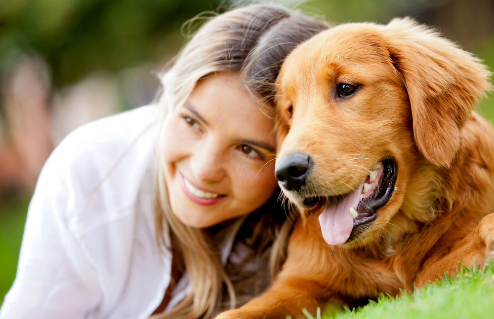The importance of pet care and its insurance