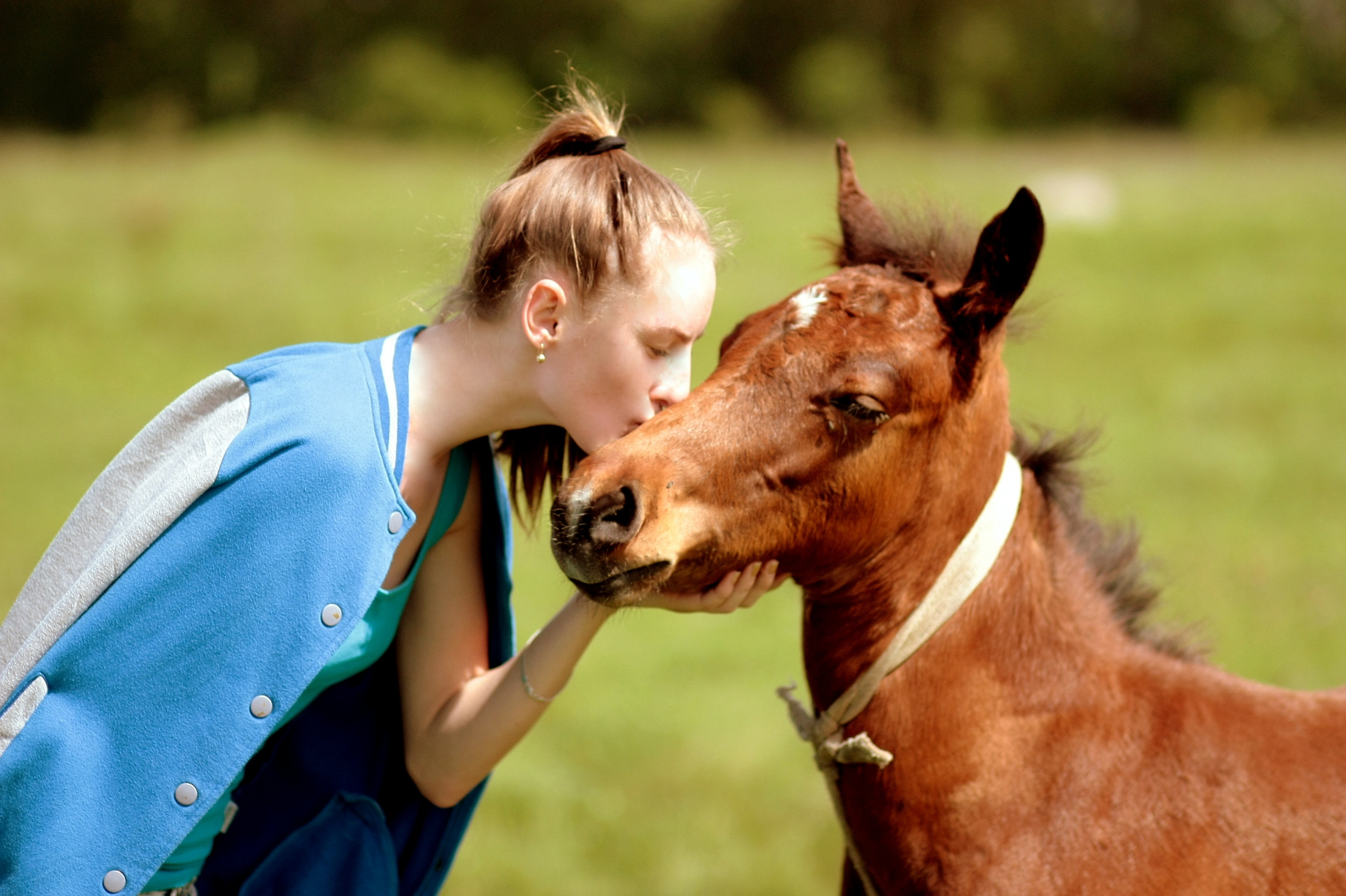 Have you imagined about checking in a hotel with your pet horse? here is the amazing story
