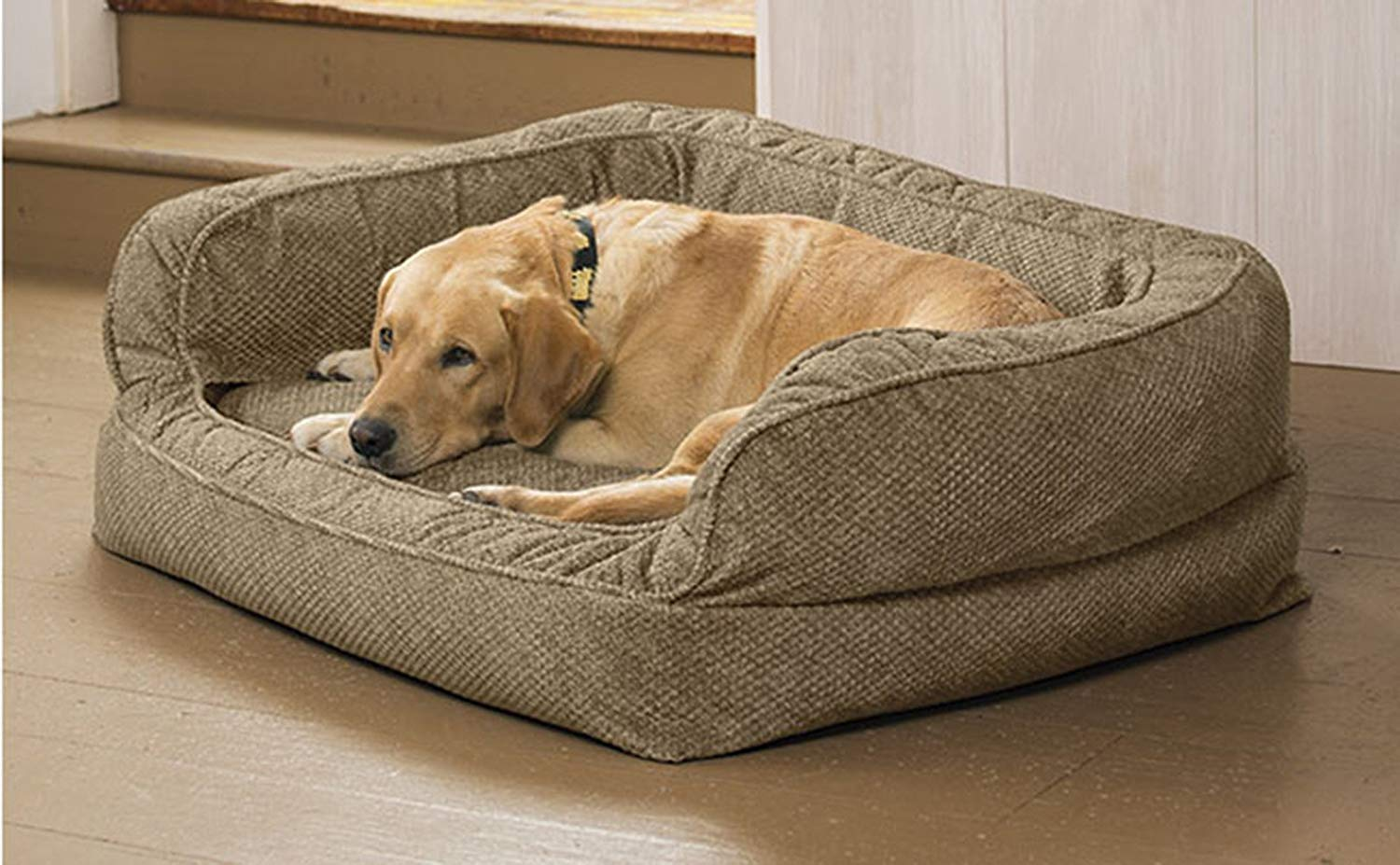 MY DOG LEFT MY BED AFTER I GOT HIM THIS DESIGNED DOG BED