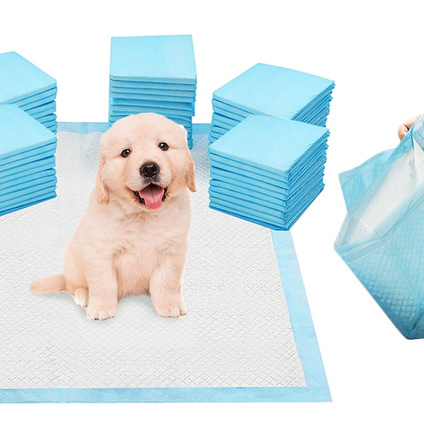 Puppy Training Pads – Good Accessories for Canine Pets